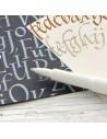 Calligraphie manuels & livrets d'entrainement